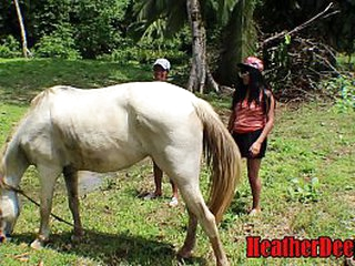 SHOCKING horse video take teens cum go for and swap
